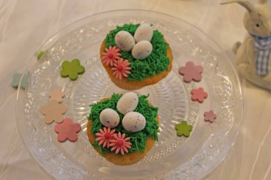 Oster Cupcakes